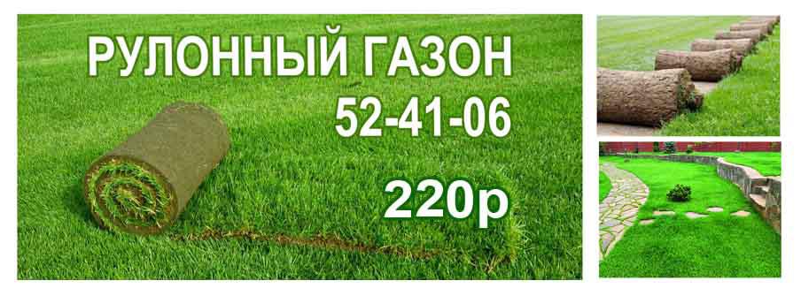 рулонный газон, рулонные газоны газон на склонах газонная трава сохнет полив газона дорожки из газона гидропосев газонов укладка рулонного газона автоматический полив, рулонный газон купить